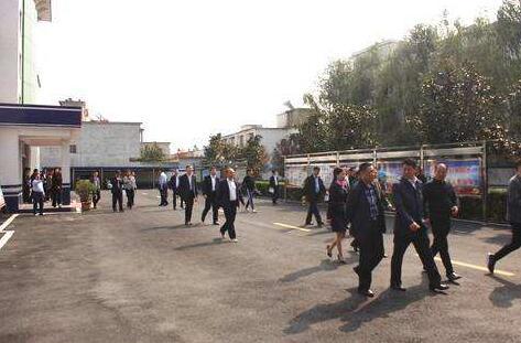 华阴市雪亮工程建设监理项目公开招标公告
